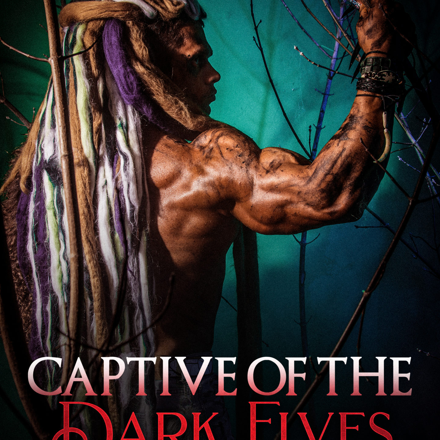 Captive of the Dark Elves